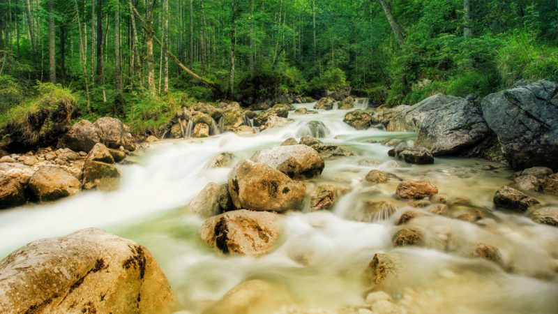 proficient vs fluent speech flows like a stream