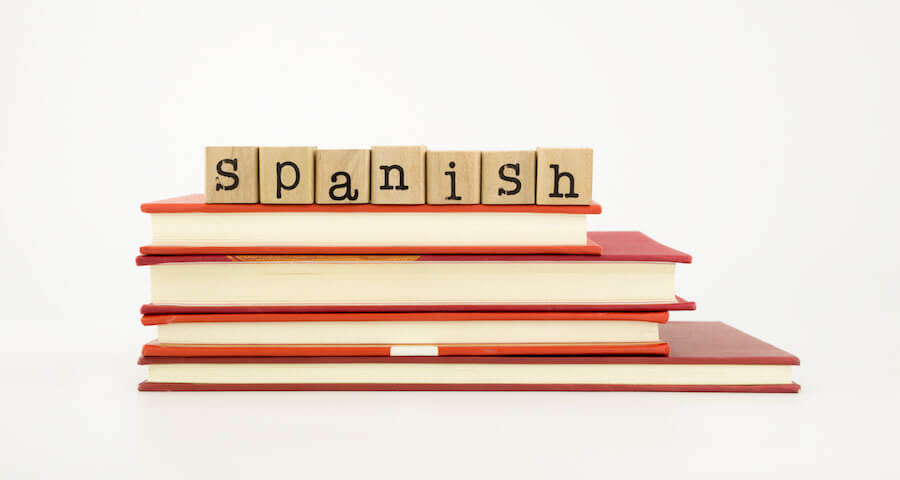 Basic Spanish Grammar Book
