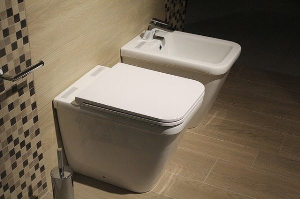 French WC bidet in the home