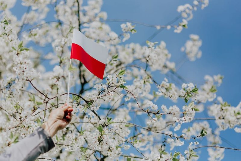 Learn Polish easily with the best methods