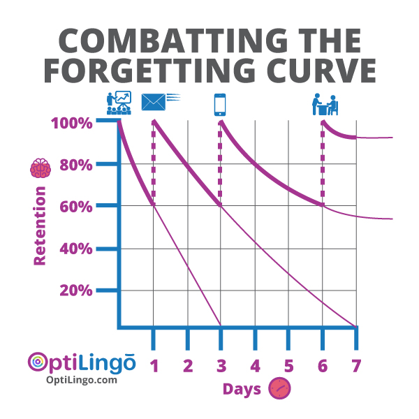 combatting the forgetting curve is the fastest way to learn a language