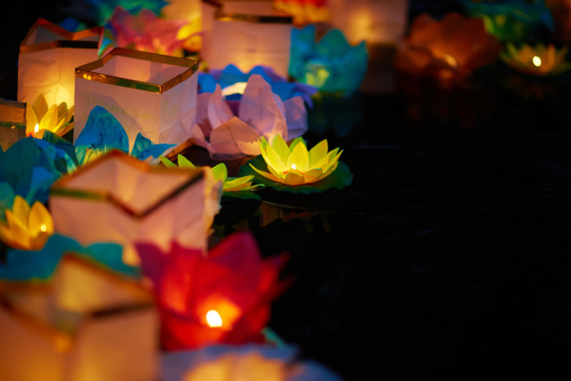 lotus flower lanterns